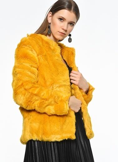 Goldie Goldie Ceket Sarı